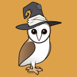 Barn Owl Witch