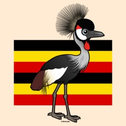 Grey Crowned-Crane of Uganda
