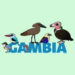 The Birdorable Gambia
