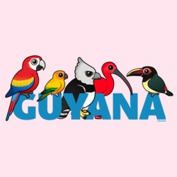 Birdorable Guyana