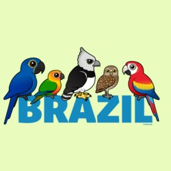 Birdorable Brazil