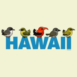 Birdorable Hawaii