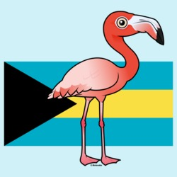 National Birdorable of the Bahamas