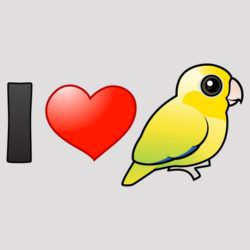 I Love Yellow Pacific Parrotlets