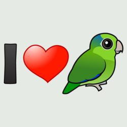 I Love Pacific Parrotlets