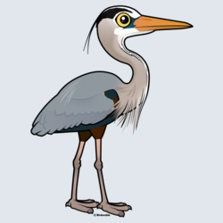 Birdorable Great Blue Heron