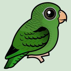 Cute Green Linnie