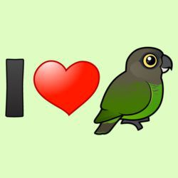 I Love Brown-headed Parrots
