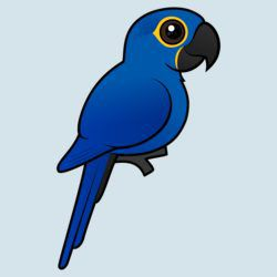 Customizable Hyacinth Macaw