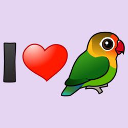I Love Fischer's Lovebirds
