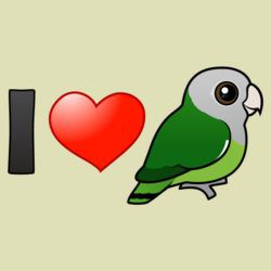 I Love Gray-headed Lovebirds