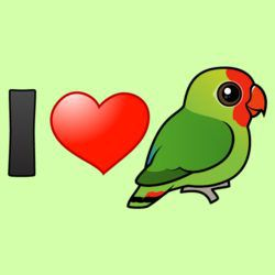 I Love Red-headed Lovebirds