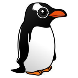 Cute Gentoo Penguin