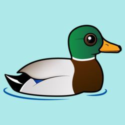 Customizable Mallard