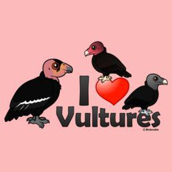 I Love Vultures (North America)