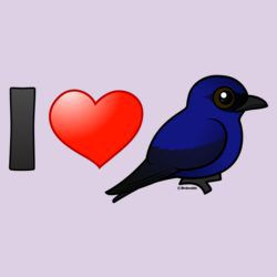 I Love Purple Martins