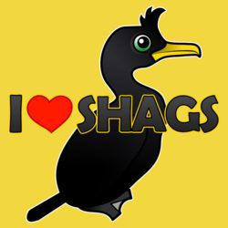 I Love Shags