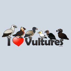 I Love Vultures (Eurasia)