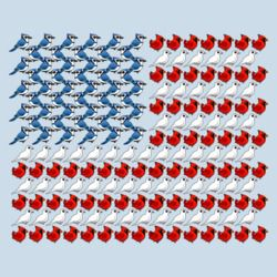 U.S. Flag of Birds