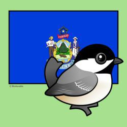 State Birdorable of Maine: Chickadee