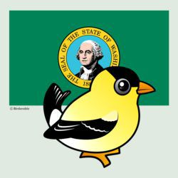 State Birdorable of Washington: Goldfinch