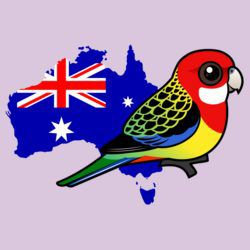 Eastern Rosella of Australia
