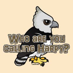 Who are you calling Harpy?