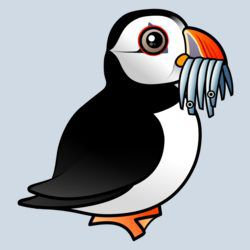 Puffin Prowess