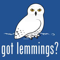 got lemmings? with Snowy Owl