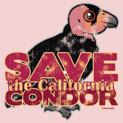 Save the California Condor