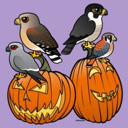 Birdorable Raptors on Pumpkins