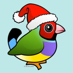 Christmas Gouldian Finch