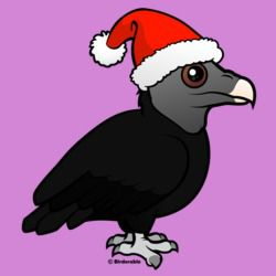 Christmas Black Vulture Santa