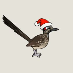 Roadrunner as Santa Claus
