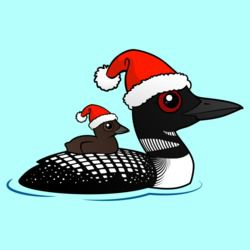 Common Loon as Santa
