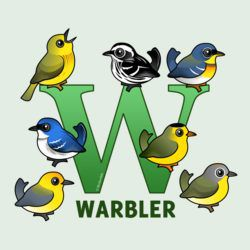 W is for Warbler