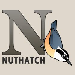 N is for Nuthach