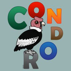 Colorful Condor