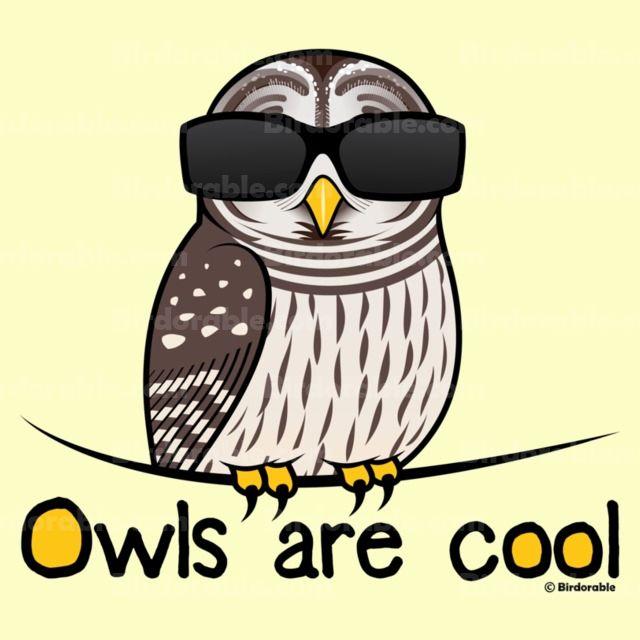 Owls Are Cool Men 39 S Crew Value T Shirt In Birdorable Shop