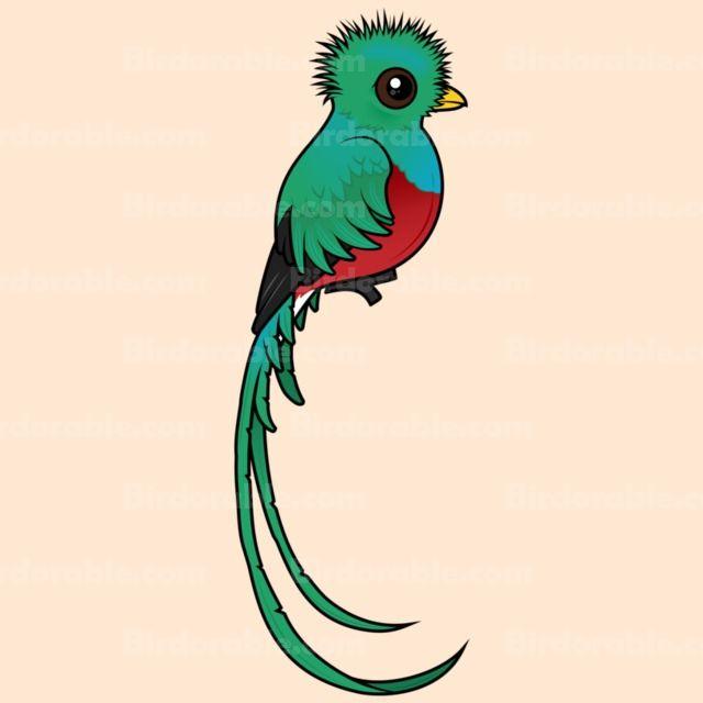 Resplendent Design From Katarzyna Kraszewska: Cute Resplendent Quetzal Gifts From Birdorable.com