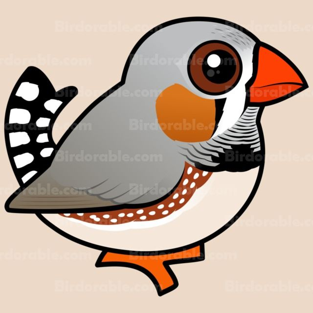 Shop Cute Cartoon Zebra Finch Gifts for Bird Lovers