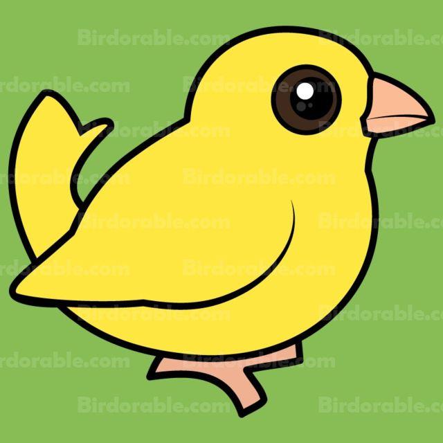 "Cute Domestic Canary Avery Signature Binder 8.5x11"""