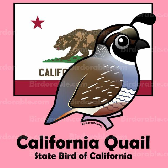 Cute Tees Gifts With Ca State Bird California Quail