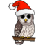 Barred Owl Santa
