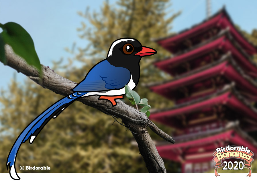 Birdorable Red-billed Blue-Magpie