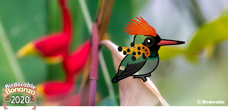 Birdorable Tufted Coquette