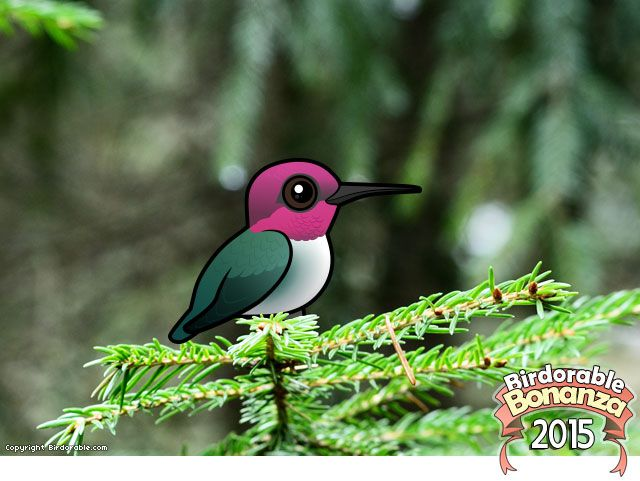 Birdorable Bee Hummingbird