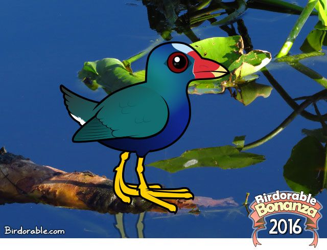 Birdorable Purple Gallinule