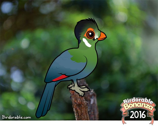Birdorable White-cheeked Turaco