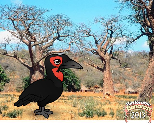 Birdorable Southern Ground Hornbill
